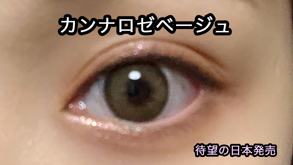 1day カンナロゼ 【お試し】アイクローゼットワンデー(eye closet